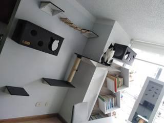 Adecuacion de espacio para gatos_gatificacion_ de ModuCat Estructuras modulares para gatos Moderno