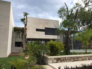 axg arquitectos Casas de estilo tropical Hormigón Negro