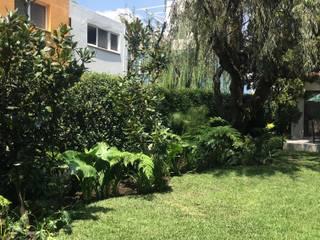 JARDÍN SAUCE Jardines clásicos de Jardin Urbano Clásico