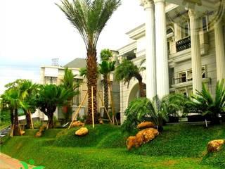TUKANG TAMAN JAKARTA TIMUR Tukang Taman Jakarta Halaman depan Batu Multicolored
