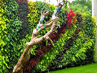 Tukang Taman Jakarta Сад Забор и ворота Полиэстер Многоцветный