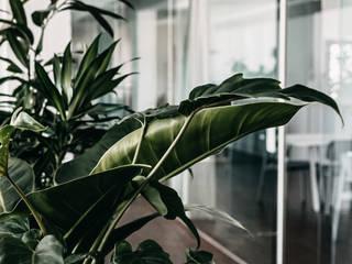 INpuls interior design & architecture Interior landscaping