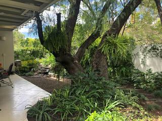 Jardines de estilo ecléctico de Hábitas Ecléctico