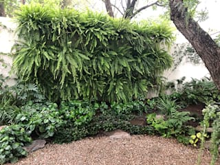 Hábitas Eclectic style garden Green