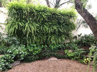 Hábitas Giardino eclettico Verde
