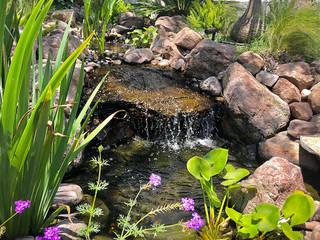 Hábitas Bahçe süs havuzu Taş