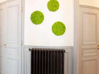 APPARTEMENT HAUSSMANIEN Couloir, entrée, escaliers originaux par MISS IN SITU Clémence JEANJAN Éclectique