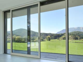 LE.ALL.FER. S.r.l. Fenêtres en bois Aluminium/Zinc Beige