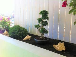 de Jardines Feng Shui Minimalista