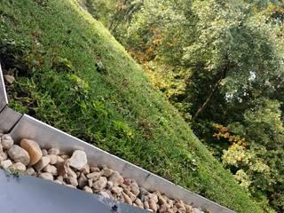 GREENFOND POLSKA SPÓŁKA Z OGRANICZONĄ ODPOWIEDZIAL Moderner Balkon, Veranda & Terrasse Grün