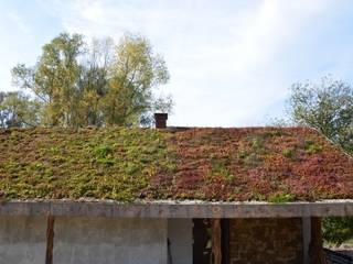 GREENFOND POLSKA SPÓŁKA Z OGRANICZONĄ ODPOWIEDZIAL Плоские крыши