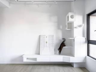 與貓的快意共棲 文儀室內裝修設計有限公司 现代客厅設計點子、靈感 & 圖片