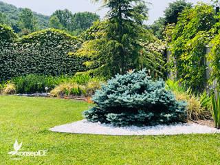 Classic style garden by konseptDE Peyzaj Fidancılık Tic. Ltd. Şti. Classic