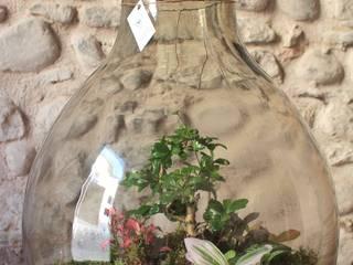 Il Giardino di Vetro