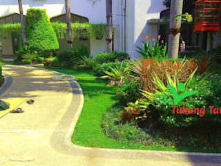 TUKANG TAMAN JAKARTA HARGA MURAH Tukang Taman Jakarta Halaman depan Batu Multicolored