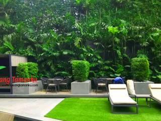 Tukang Taman Jakarta Стены и пол в стиле минимализм Железо / Сталь Зеленый