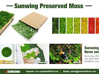 Improve Indoor Environments with Reindeer Moss Or Artificial Офисы и магазины в стиле кантри от Sunwing Industries Ltd Кантри