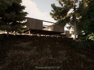 TRAMA ARQUITECTOS Bungalow Kayu Wood effect