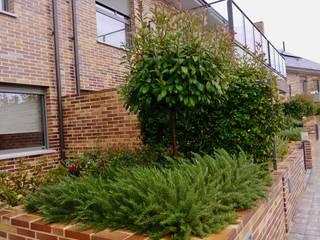 AJARDINAMIENTO DE UNA PROMOCIÓN DE ADOSADOS Arcadia Jardines y paisajes Jardines de estilo clásico