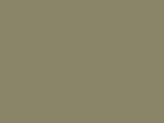 Jardines Residenciales Sonoran Landscaping