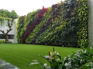 TUKANG TAMAN VERTIKAL JAKARTA Tukang Taman Jakarta Garden Plants & flowers Besi/Baja Multicolored
