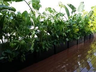 Jardineria bonaterra 庭植木&花