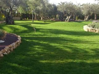 JARDINERIA POZO S.L. Rock Garden