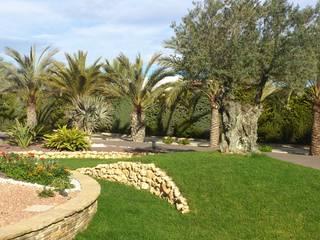Ajadinamiento de parcela particular en Elche JARDINERIA POZO S.L. Jardines con piedras