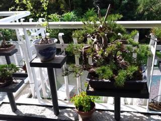 Stefania Lorenzini garden designer Modern Terrace Iron/Steel Grey