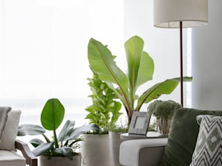 DCC by Next arquitetura Livings de estilo moderno Verde