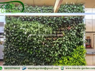Tukang Taman Vertikal Jember NISCALA GARDEN | Tukang Taman Surabaya Kantor & Toko Tropis