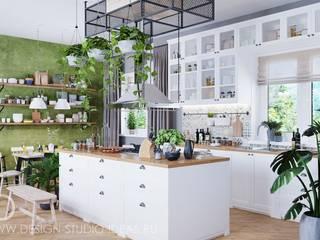 Студия дизайна ROMANIUK DESIGN Cocinas de estilo escandinavo