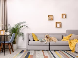 press profile homify Living roomAccessories & decoration