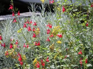 Yougardener Mediterranean style garden Multicolored