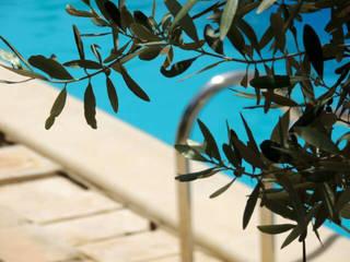 Nuova costruzione di una villa con giardino in Sicilia Luisa Olgiati Piscina in stile rurale