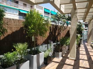LOBATO LANDSCAPE Balkon, Beranda & Teras Tropis