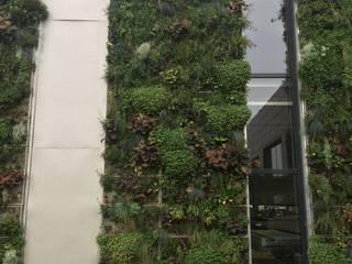 Vertical Flore Walls