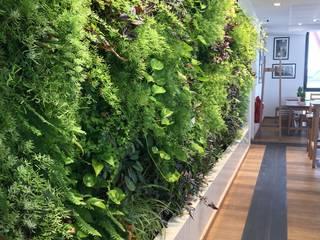 Vertical Flore Стены и пол в классическом стиле