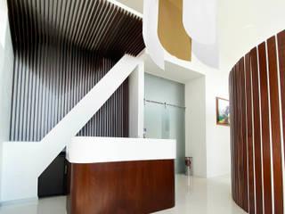 Estudio Chipotle Oficinas y bibliotecas de estilo moderno Madera Acabado en madera