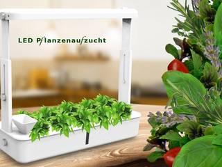 @tec Pflanzenaufzuchtstation - Mini Gewächshaus mit LED Beleuchtung und Bewässerung incl. Anzuchttöpfe für 10 Setzlinge arcotec GmbH KücheKüchenutensilien Kunststoff Weiß