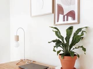 Bioma Plants Study/officeAccessories & decoration