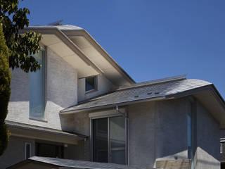 蓑甲(みのこう)の家 ATS造家設計事務所 切妻屋根 金属 メタリック/シルバー