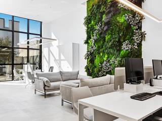 Jardín vertical para oficinas Alibaz Construcción GREENAREA Paisajismo de interiores