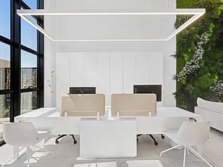 Jardín vertical para oficinas Alibaz Construcción GREENAREA Paredes y suelosDecoración de paredes
