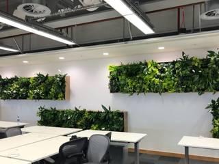 Urban Jungle - Plantas e Projectos Edificios de Oficinas