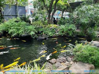 Hồ cá koi Miền Nam Садовий ставок Камінь Зелений