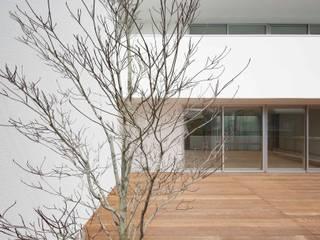 空間建築-傳 Дерев'яні будинки Дерево Білий