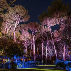 Villa particulier ALPES MARITIMES Artlight Design Jardin méditerranéen