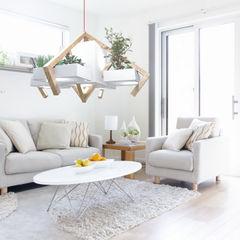 Solid Interior Design HogarPlantas y accesorios
