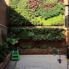 Living wall completed Jane Harries Garden Designs